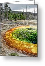 Morning Glory Pool - Yellowstone Greeting Card