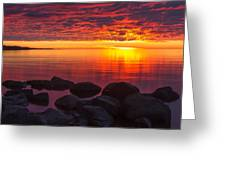 Morning Glow Greeting Card by Mary Amerman