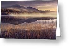 Morning In Adirondacks Greeting Card by Magda  Bognar