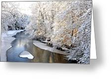 Morning Light Fresh Snowfall Gauley River Greeting Card