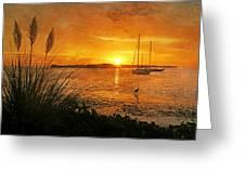 Morning Light - Florida Sunrise Greeting Card
