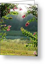 Morning Marsh Greeting Card