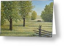Morning Meadow Greeting Card