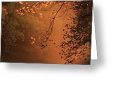 Morning Mist-blue Ridge Parkway Greeting Card