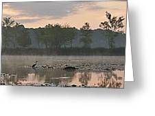 Morning Mist I Greeting Card