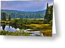 Morning Mist On The Moose River Greeting Card by David Patterson