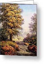 Morning Mist Greeting Card by W  Scott Fenton