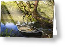 Morning Mists Greeting Card