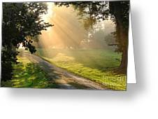 Morning On Country Road Greeting Card