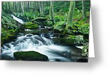 Morning On Hancock Brook Greeting Card
