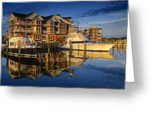 Morning On The Docks Greeting Card