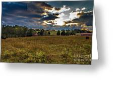 Morning On The Farm Three Greeting Card