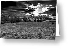 Morning On The Farm Two Bw Greeting Card