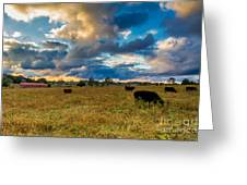 Morning On The Farm Two Greeting Card