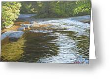 Morning On The Little River Greeting Card