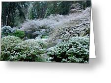Morning Snow In The Garden Greeting Card