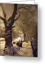 Morning Snow Greeting Card