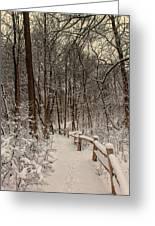 Morning Snow Path Greeting Card