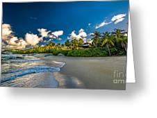Morning Sun At Trunk Bay Greeting Card
