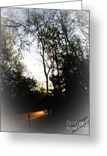 Morning Walk Greeting Card by Jeffery Fagan