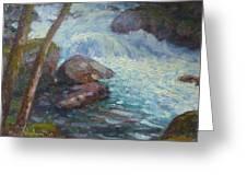 Morraine Ck. Fiordland Nz. Greeting Card