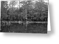 Morrison Springs Drought Greeting Card