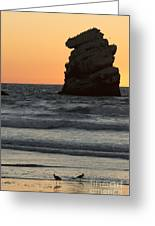 Morro Beach Sunset Greeting Card