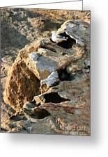 Morro Rock Nesting Greeting Card