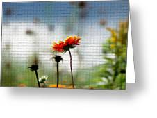 Mosaic Flower Greeting Card