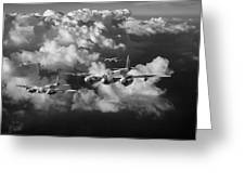 Mosquitos Above Clouds Black And White Version Greeting Card