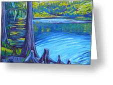 Moss And Cypress Greeting Card