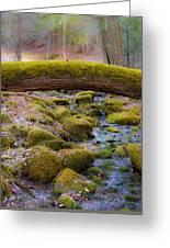 Moss Bridge Greeting Card