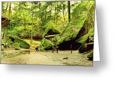 Moss Covered Rocks In Forest, Rocky Greeting Card