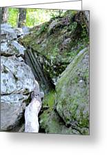 Moss Rock 2 Greeting Card