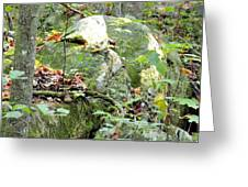 Moss Rock 3 Greeting Card