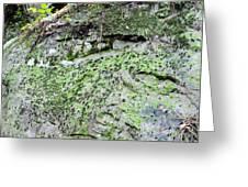 Moss Rock Greeting Card