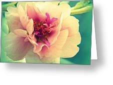 Moss Rose Abstract Greeting Card