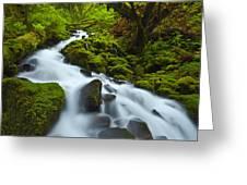 Mossy Creek Cascade Greeting Card