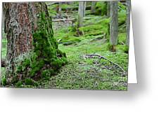 Mossy Endevor Greeting Card