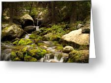 Mossy Falls 1 Greeting Card