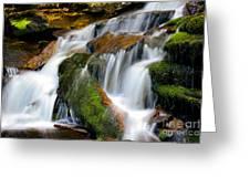 Mossy Falls Greeting Card