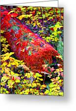 Mossy Log In Red Greeting Card