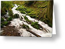 Mossy River Flowing. Greeting Card