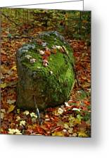 Mossy Rock Greeting Card