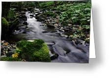 Mossy Rock Streamside Greeting Card