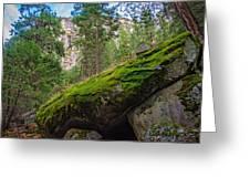 Mossy Rocks Along Vernal Falls Trail Greeting Card