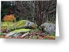 Mossy Rocks Garden Greeting Card