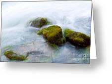 Mossy Rocks Greeting Card