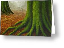 Mossy Trees Greeting Card