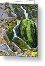 Mossy Waterfall At Snow Lake Greeting Card